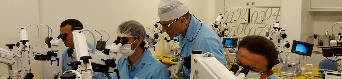 Imersão - Endodontia Avançada com Microscopia